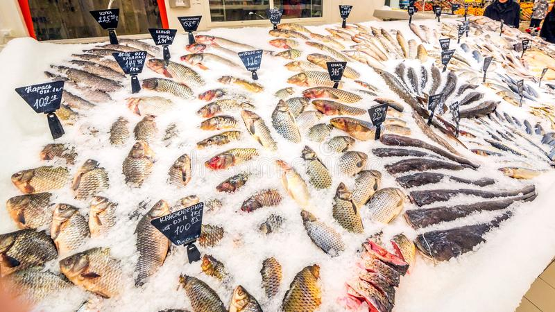 Uma grande seleção de grupos diversos do trigo mourisco no supermercado fotografia de stock
