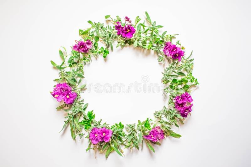 Uma grinalda das violetas em um fundo branco Quadro redondo de flores roxas e da grama fresca Flores do verão Configuração lisa,  ilustração royalty free