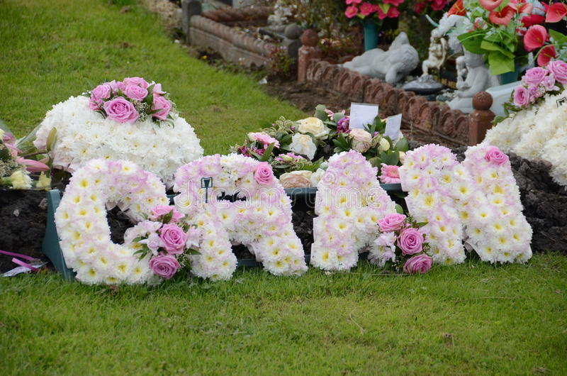 Download Grinalda floral imagem de stock. Imagem de grinalda, sepultura - 29849209