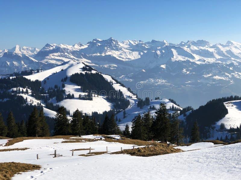 Uma ideia da tampa de neve da mola nos cumes suíços da montanha de Rigi imagem de stock