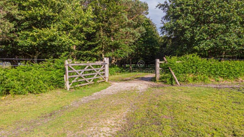 Uma ideia de uma porta de madeira aberta com uma grama verde e um trajeto rochoso que conduzem a uma floresta sob um céu azul maj imagem de stock royalty free