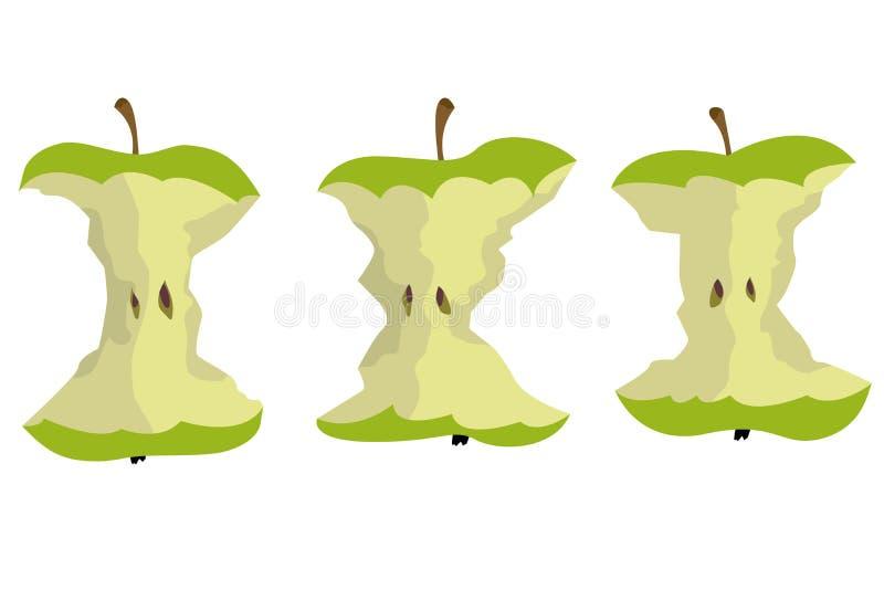 Uma ilustração bonita do núcleo da maçã ilustração royalty free