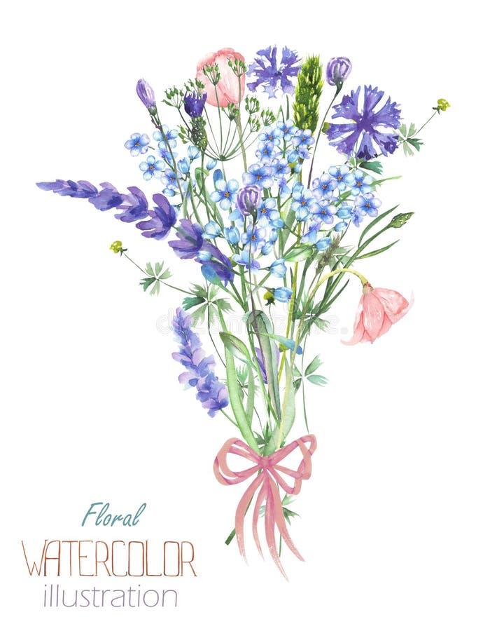 Uma ilustração com um ramalhete da flor do Myosotis da aquarela bonita, das centáureas e das flores azuis da alfazema ilustração stock
