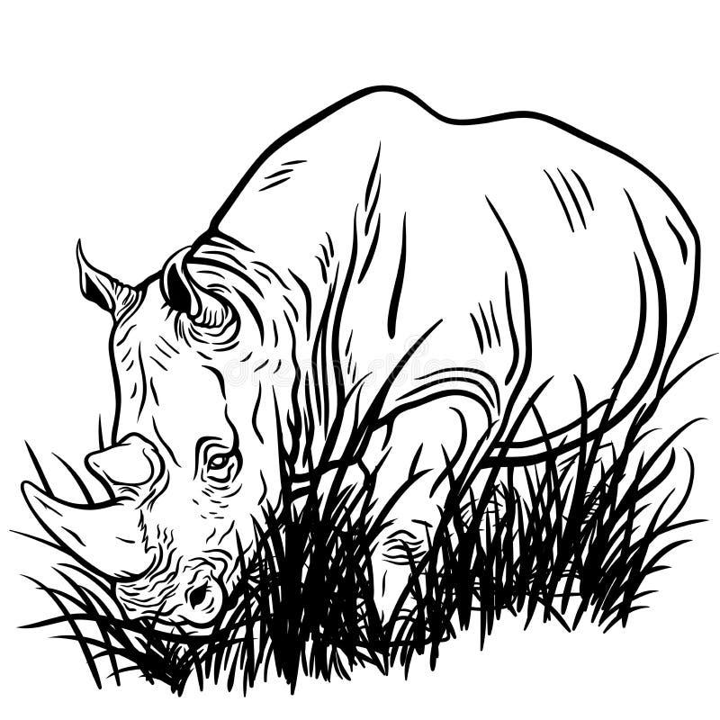 Uma ilustração de um rinoceronte de passeio imagens de stock royalty free