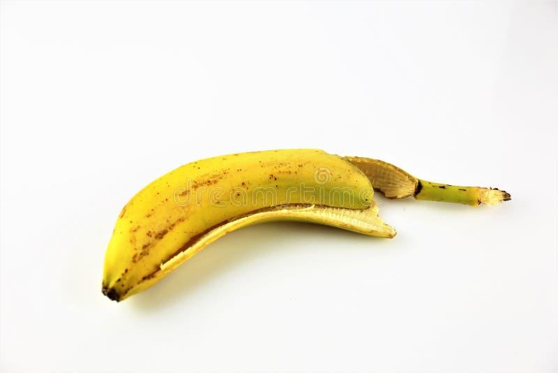 Uma imagem de algumas bananas - banana do conceito, sobremesa, fruto, alimento imagens de stock