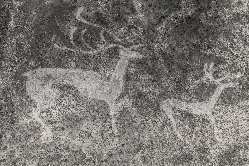 Uma imagem de animais antigos na parede da caverna ilustração stock