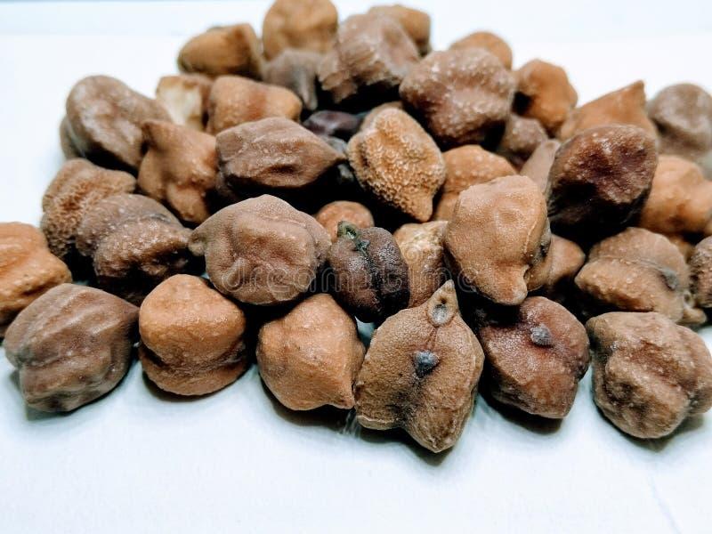 Uma imagem de grãos-de-bico pretos no fundo branco, fotos de stock
