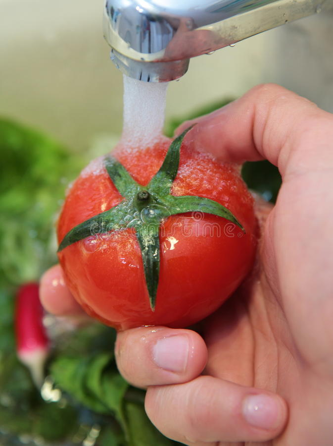 Uma imagem do detalhe de tomates de lavagem fotos de stock royalty free