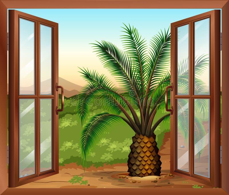 Uma janela com uma vista da planta da palma ilustração stock