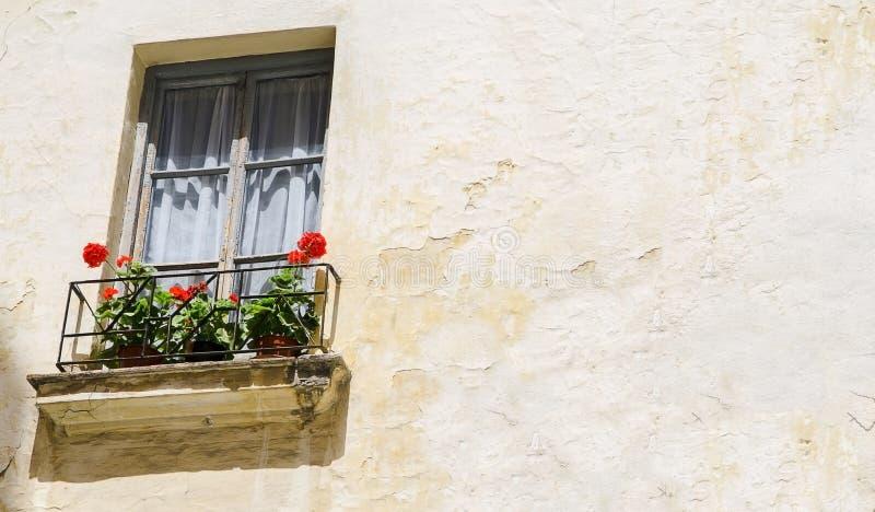 Uma janela de uma casa de ruína com a flor de Rosa em Granada, a Andaluzia, Espanha fotografia de stock