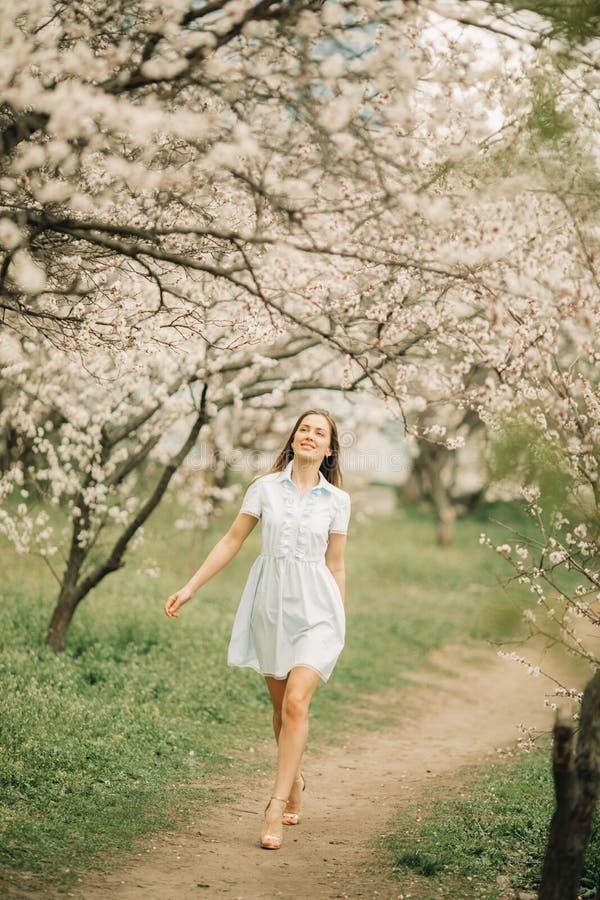 Uma jovem mulher anda entre o jardim de florescência fotos de stock royalty free