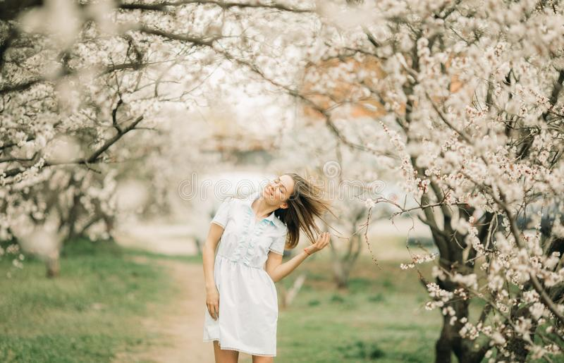 Uma jovem mulher anda entre o jardim de florescência foto de stock