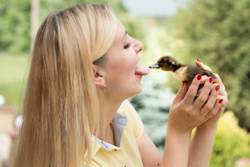 Uma jovem mulher beija pouco pato O pato arranca a língua da menina imagens de stock royalty free