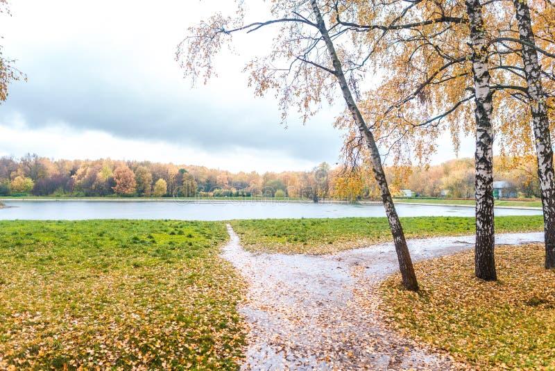 Uma lagoa em um parque do outono fotografia de stock royalty free