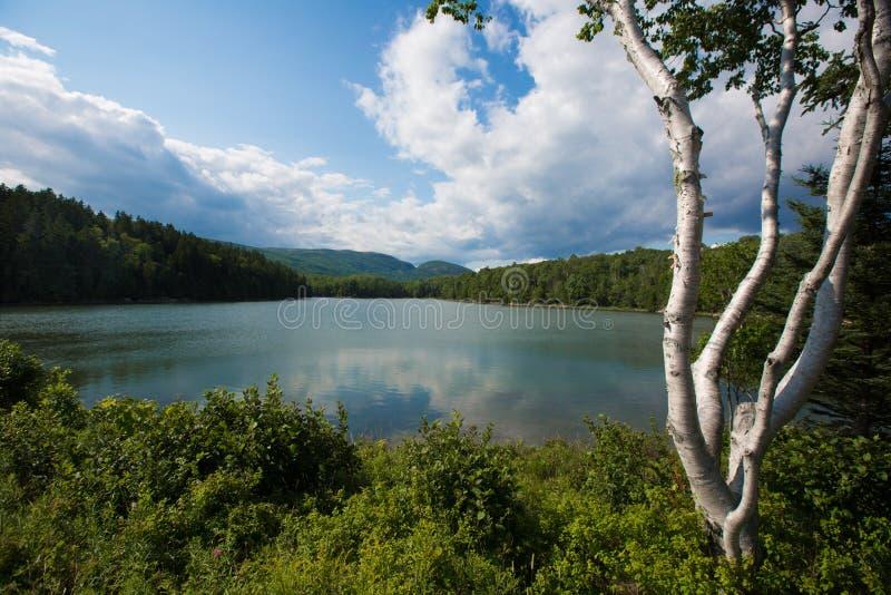 Uma lagoa no parque nacional do Acadia, Maine foto de stock