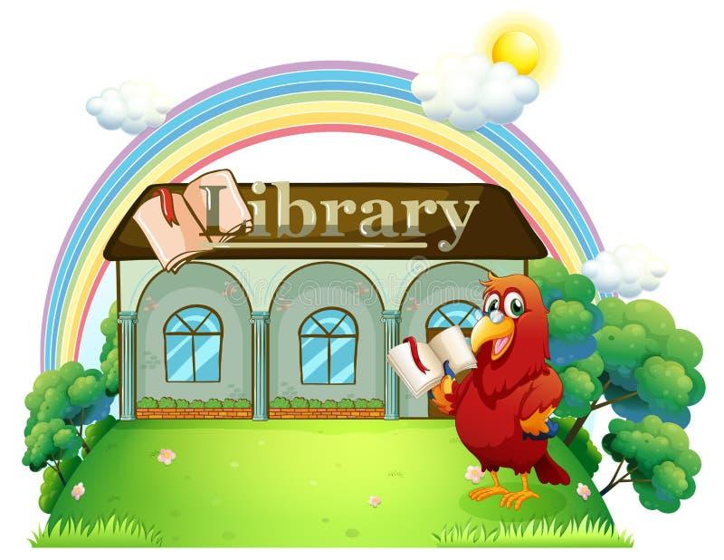 Uma leitura vermelha do papagaio na frente da biblioteca ilustração stock