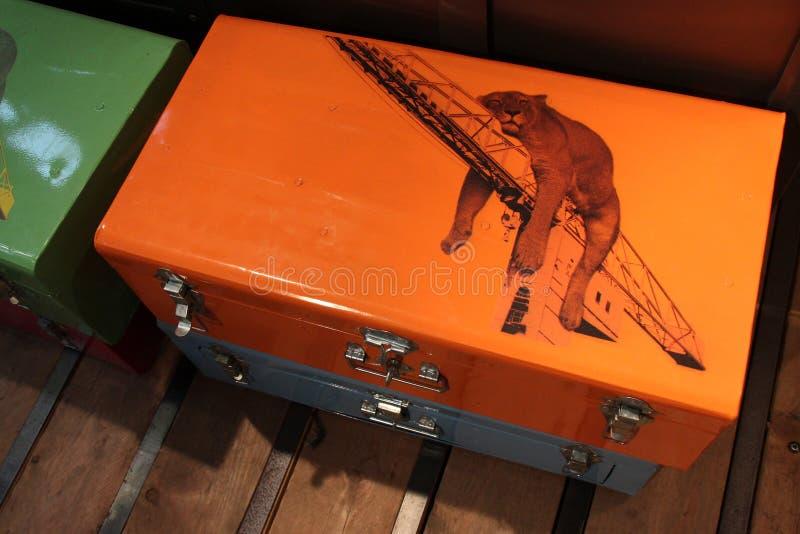 Uma leoa do sono é tirada em uma mala de viagem do metal em uma loja (França) foto de stock