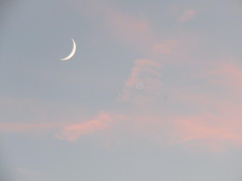Uma lua pequena do sorriso do gato de Cheshire foto de stock royalty free