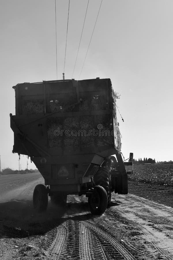 Uma máquina desbastadora de algodão colhe o preto e o wight fotos de stock
