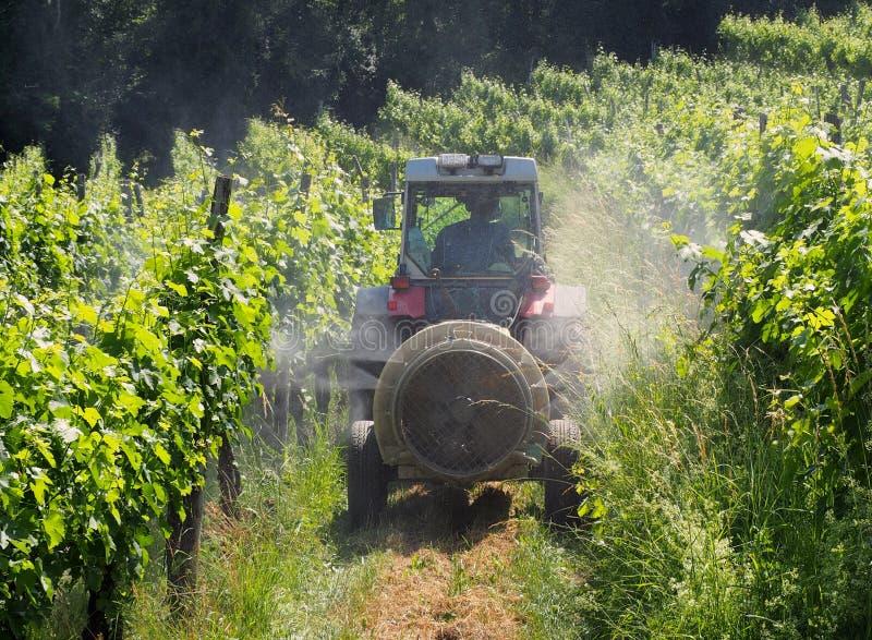 Uma máquina do pulverizador, arrastada pelo trator, polvilha inseticidas entre as fileiras dos vinhedos no verão fotos de stock
