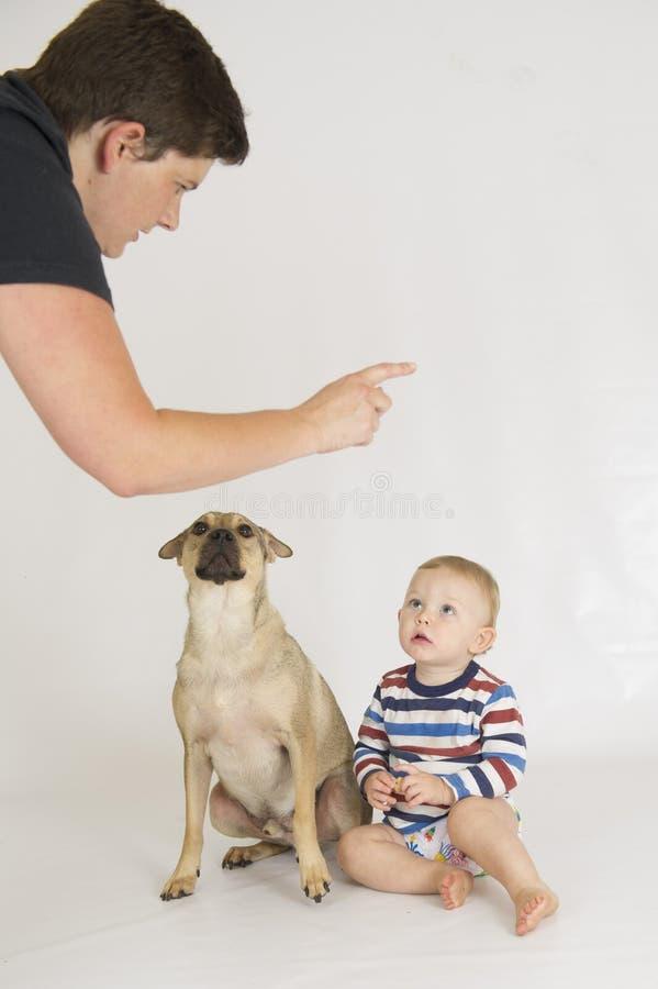 Uma mãe discute seu filho e seu cão imagens de stock royalty free