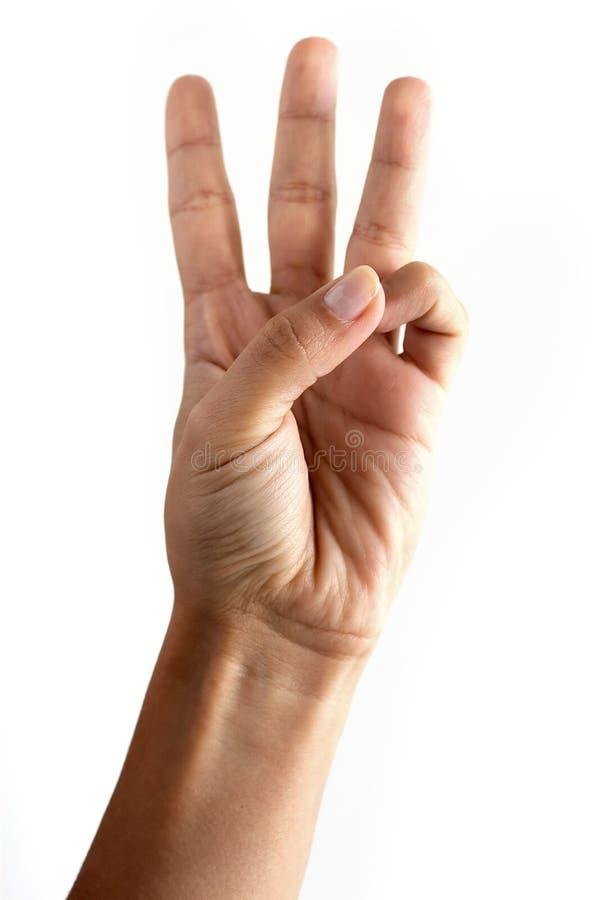 Uma mão da mulher fotografia de stock royalty free