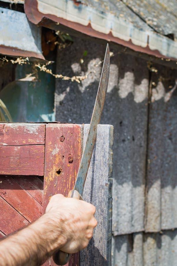 Uma mão masculina que guarda o machete Tema da sobrevivência fotografia de stock royalty free