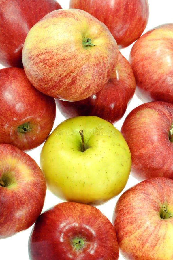 Uma maçã amarela madura com maçãs vermelhas foto de stock