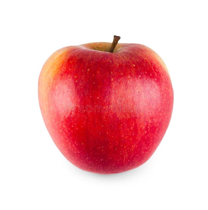 Uma maçã fresca madura isolada no fundo branco imagem de stock