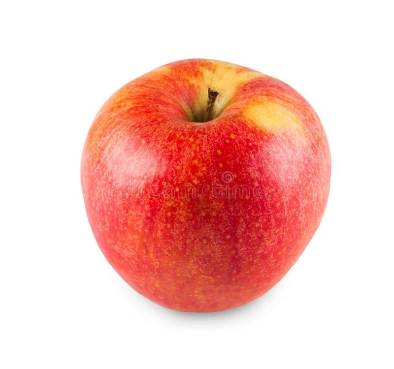 Uma maçã fresca madura isolada no fundo branco imagens de stock royalty free