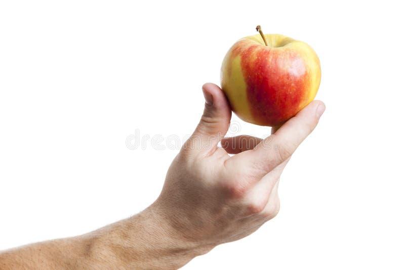 Uma maçã que guarda por uma mão masculina imagens de stock royalty free