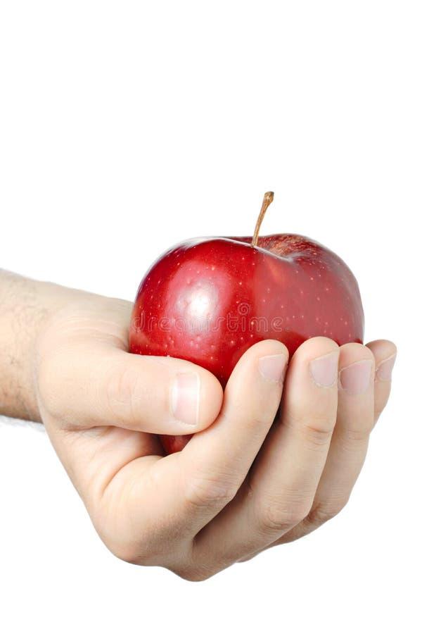 Uma maçã um o dia? foto de stock