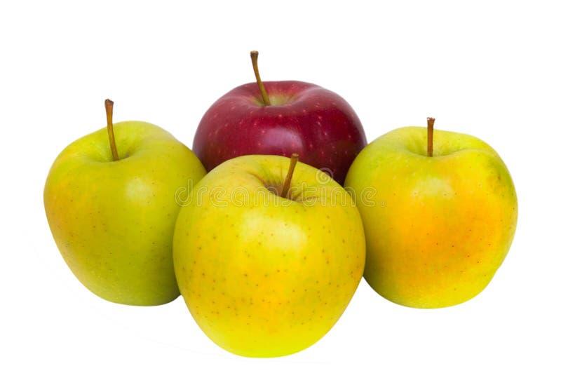 Uma maçã vermelha e três maçãs amarelas fotografia de stock royalty free