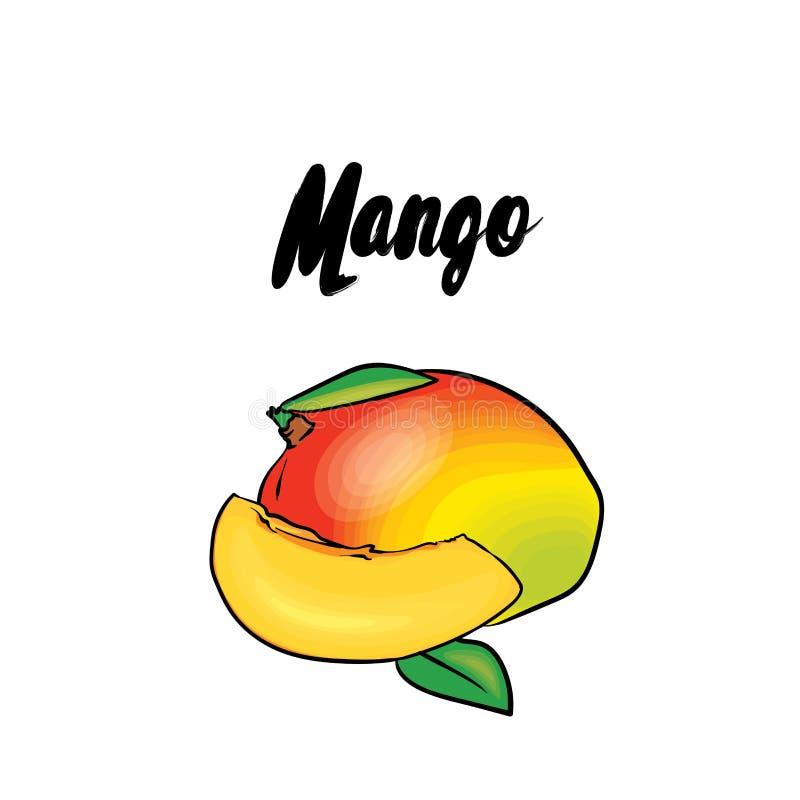 Uma manga bonita Ilustração do vetor Frutas tropicais ilustração royalty free