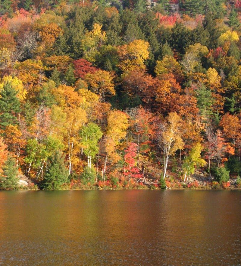 Uma manhã da queda no lago George imagem de stock
