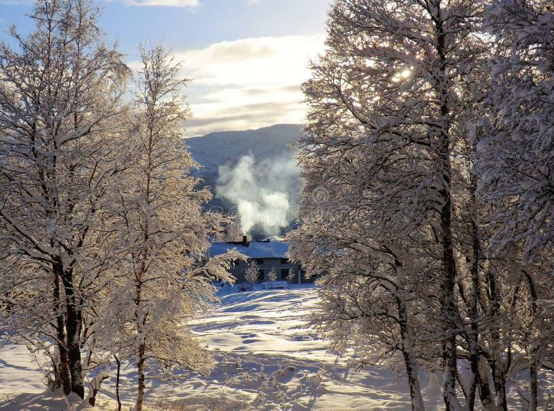Uma manhã do inverno fotos de stock royalty free