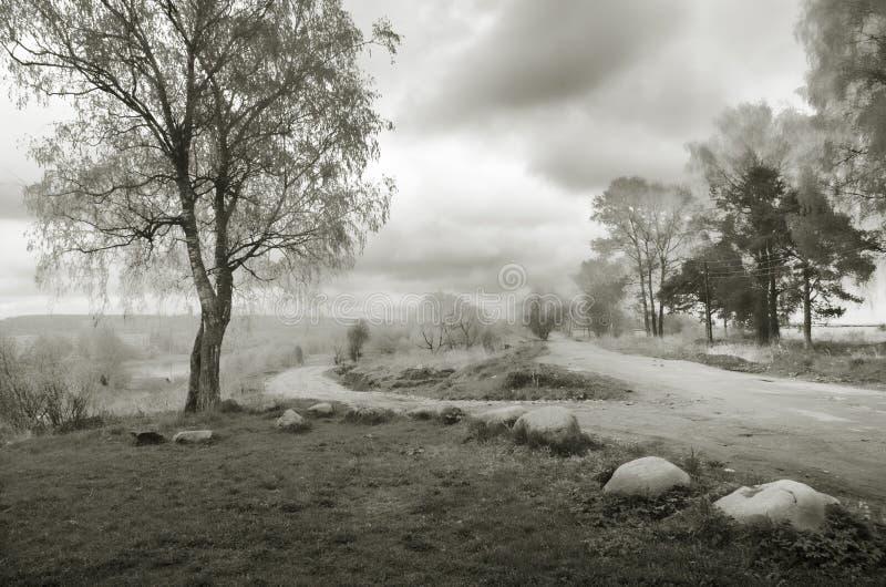 Uma manhã do norte nevoenta Rebecca 36 imagem de stock