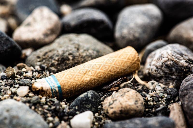 Uma Manteiga de Cigarro na Praia imagem de stock royalty free