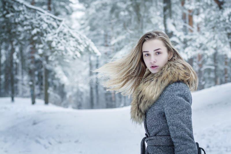 Uma menina à moda vestida, bonita em um revestimento cinzento com um colar da pele na perspectiva de uma floresta do inverno, ger imagem de stock royalty free