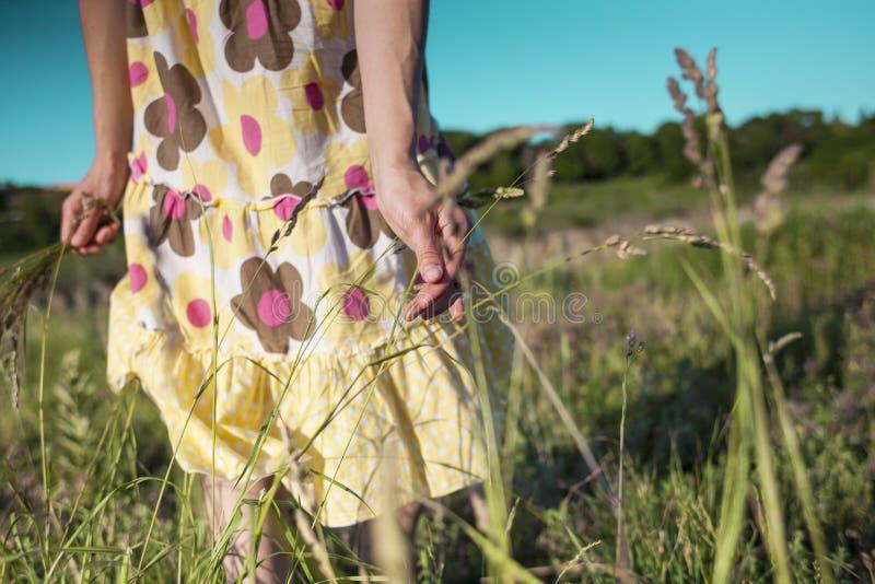 Uma menina arranca as flores selvagens imagem de stock royalty free