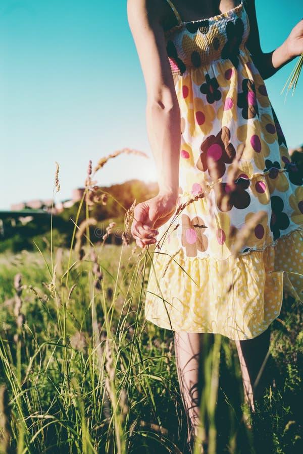 Uma menina arranca as flores selvagens fotografia de stock