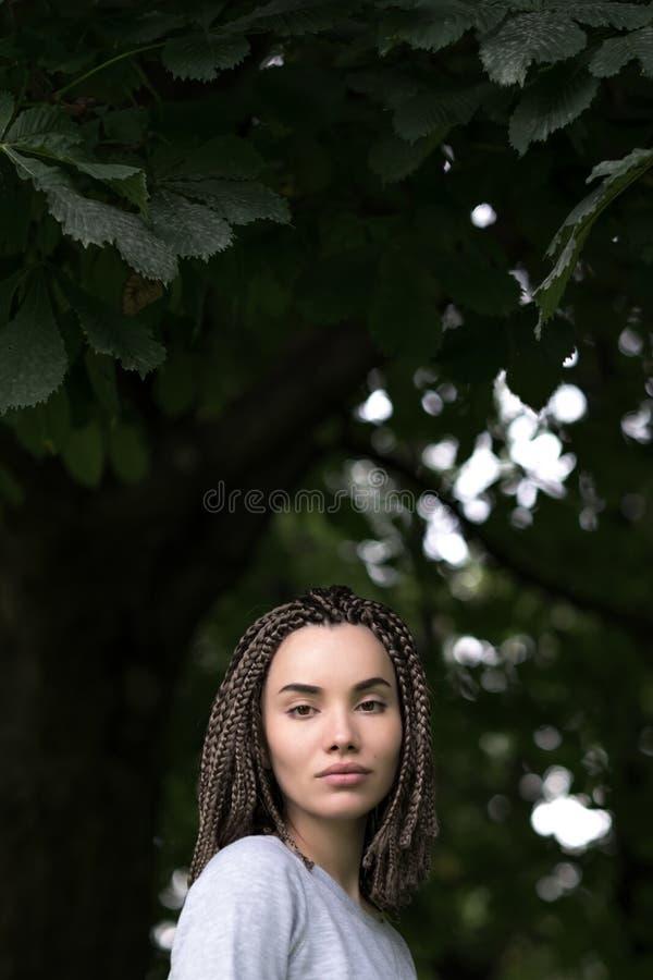 Uma menina bonita com tranças afro olha seriamente a câmera em um fundo da folha verde das árvores imagens de stock royalty free