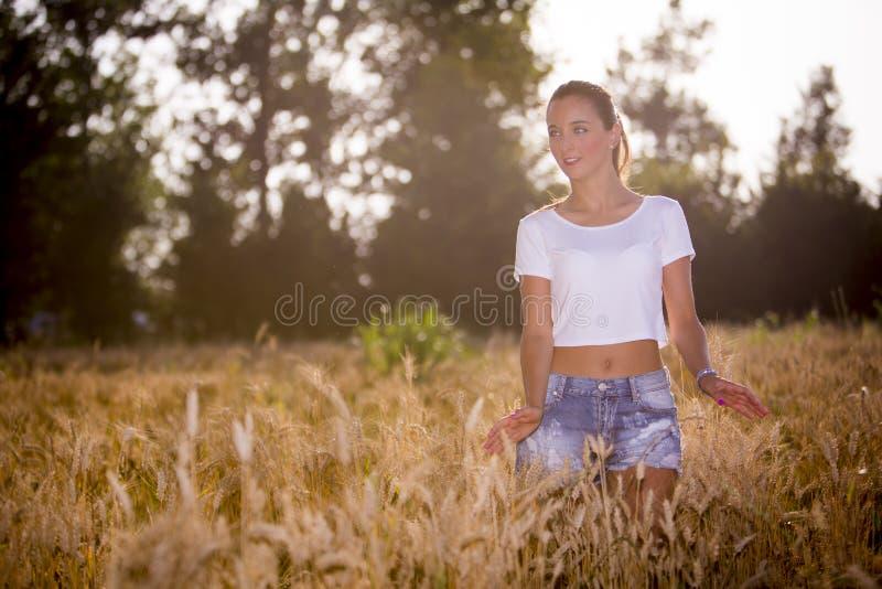 Uma menina bonita em um wheatfield no por do sol imagem de stock royalty free