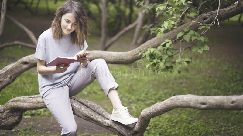 Uma menina branca moreno de sorriso está lendo um livro no parque imagem de stock royalty free