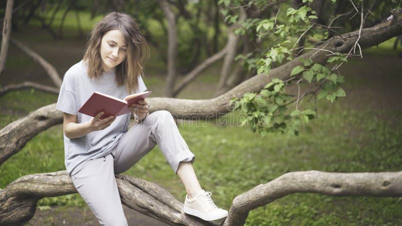 Uma menina branca moreno está lendo um livro no parque imagens de stock royalty free