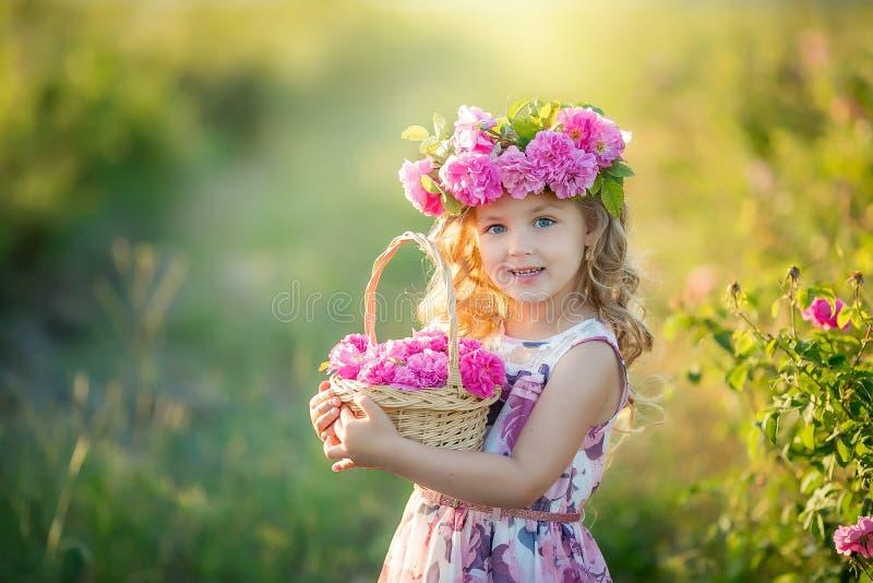 Uma menina com o cabelo louro longo bonito, vestido em um vestido leve e em uma grinalda de flores reais em sua cabeça, no fotografia de stock