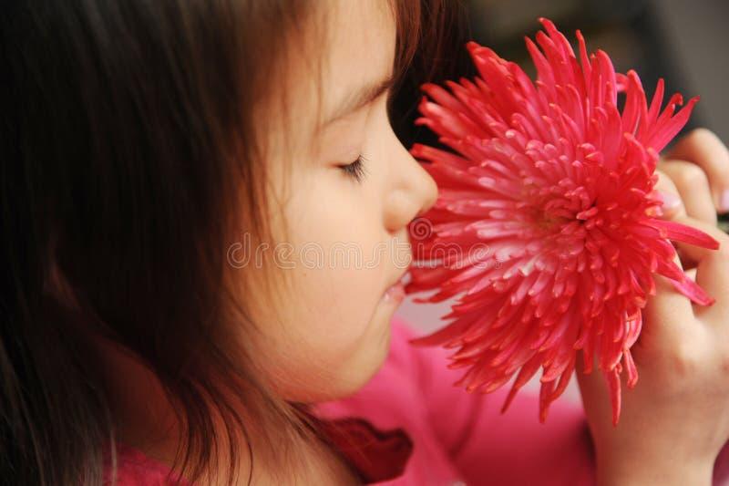 Uma menina com uma flor imagens de stock royalty free