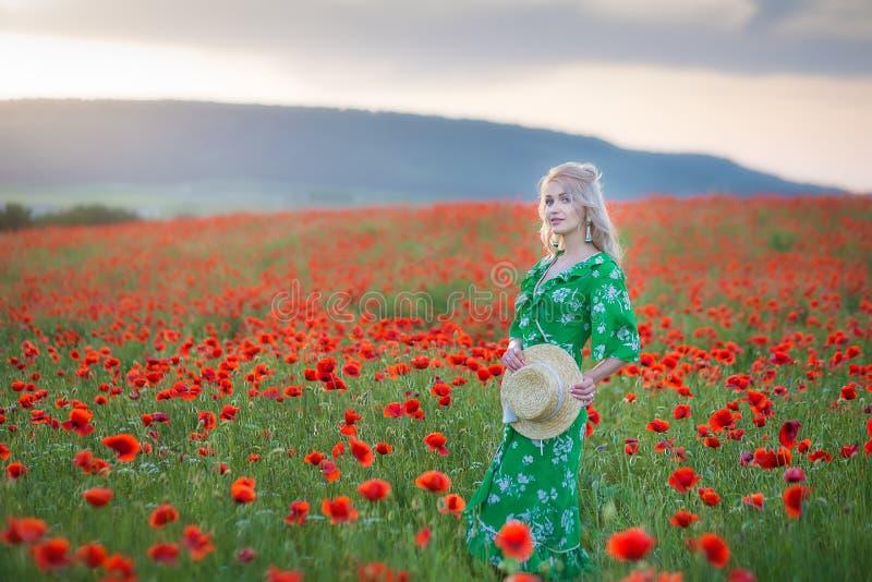 Uma menina considerável com cabelo longo e a pele natural, estando em um campo de papoilas vermelhas e guardando uma papoila verm foto de stock