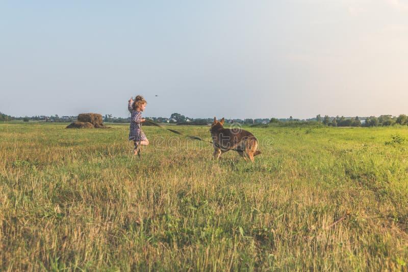 Uma menina, dia ensolarado do verão da criança andando o cão em uma trela, sheph imagem de stock royalty free