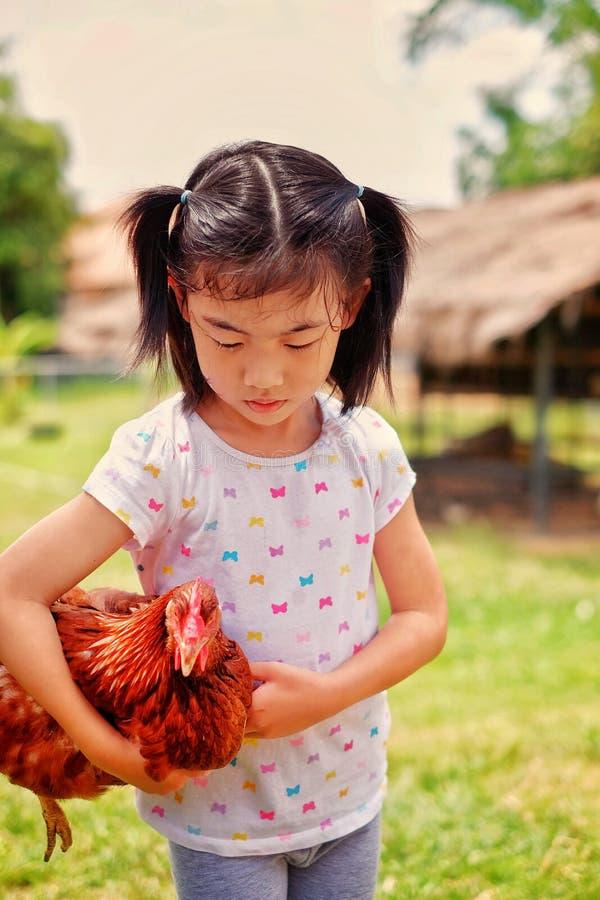 Uma menina e sua galinha foto de stock